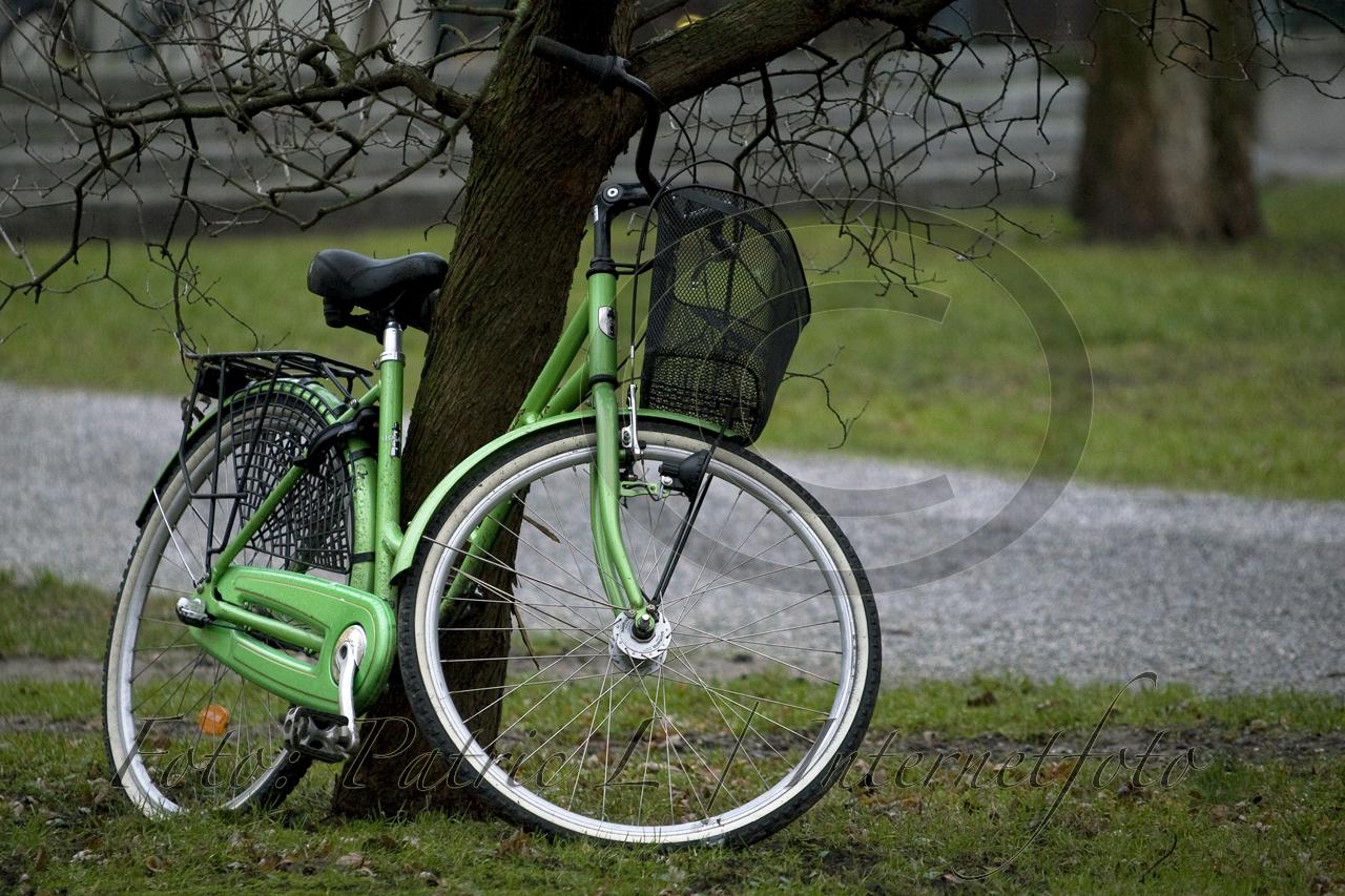 Grön cykel