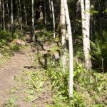 Bomarsunds vandringsled