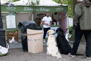Hundrestaurang på matfestivalen Smaka på Stockholm