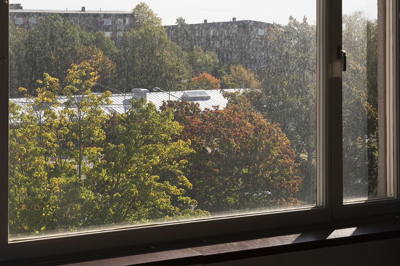 Smutsigt vardagsrumsfönster