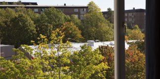 Nytvättad varagsrumsfönster