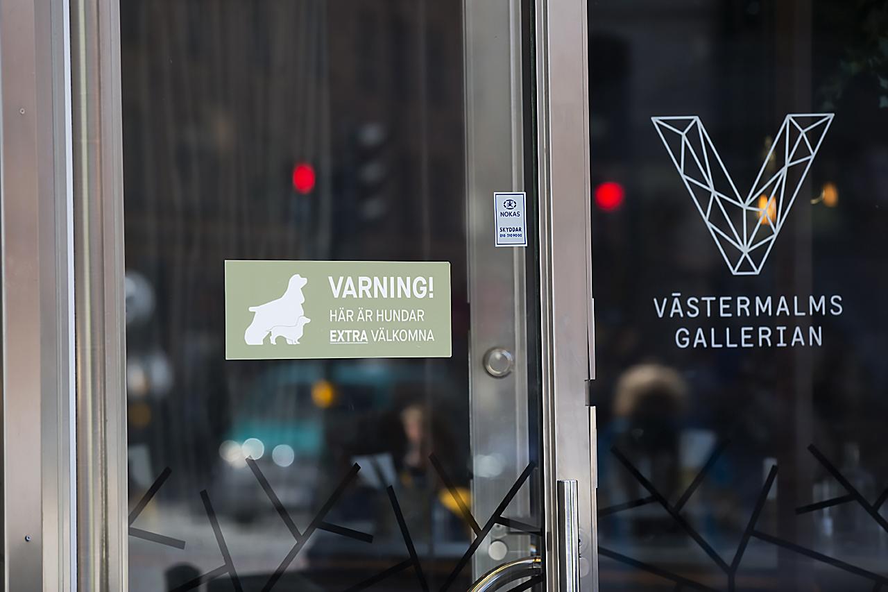 Hundar är extra välkomna till Västermalmsgallerian