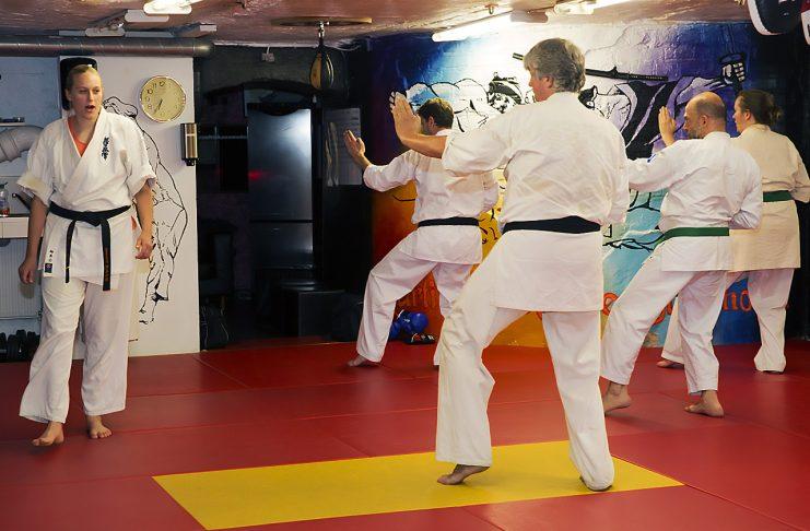 Professionella bilder när du tränar, tävlar eller instruerar