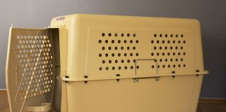Jetbox hundbur för flygtransporter till salu