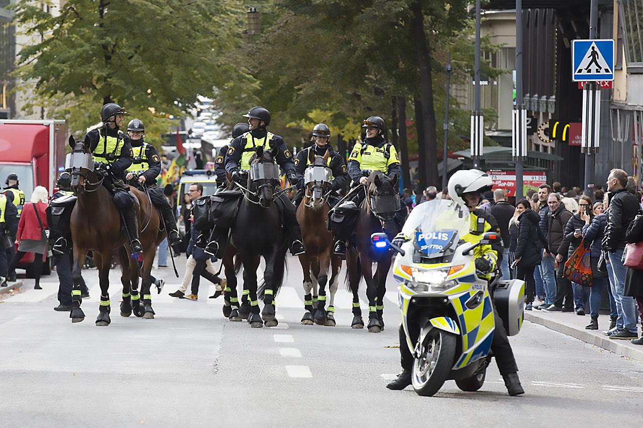 Polis på hästkrafter