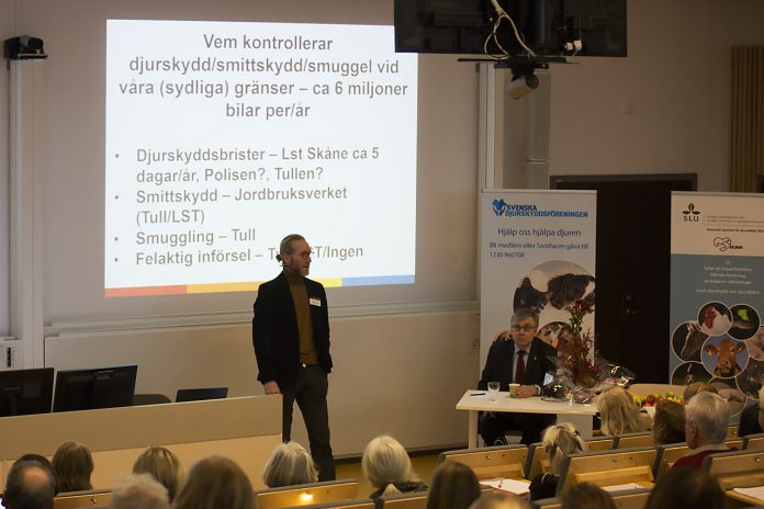 Mattias Gårdlund