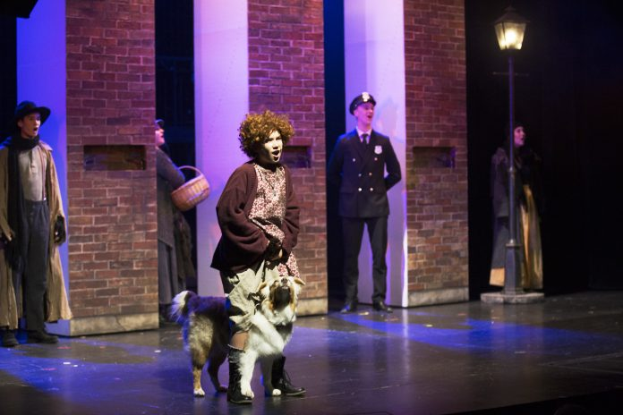 Hunden Sheila som Sandy i musikalen Annie