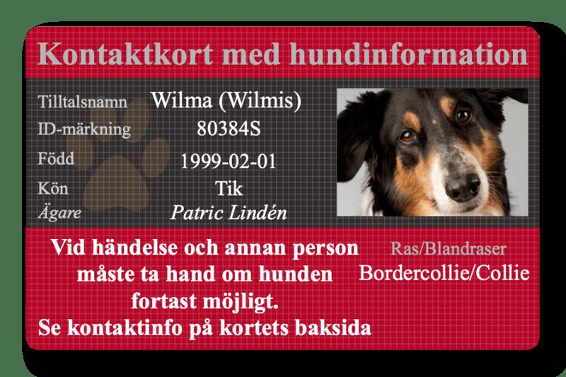 Internetfoto Sverige profilkort