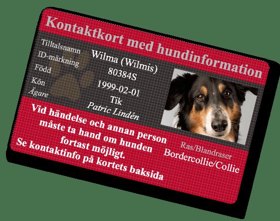 Internetfoto Hund-ID kontaktkort