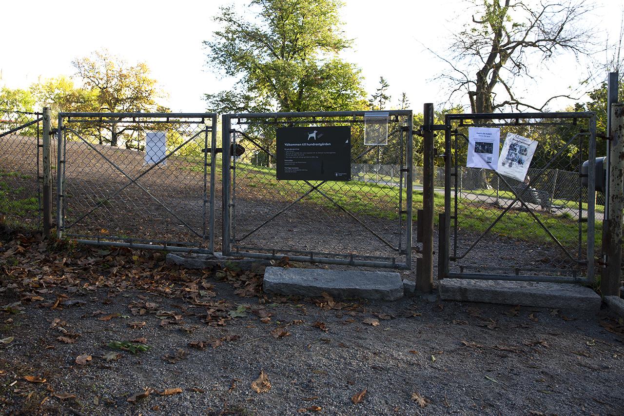 Vanadislundens hundrastgård övre grind