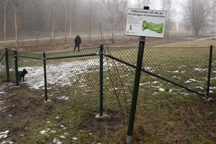 Hundpark i naturreservatet Sätraskogen