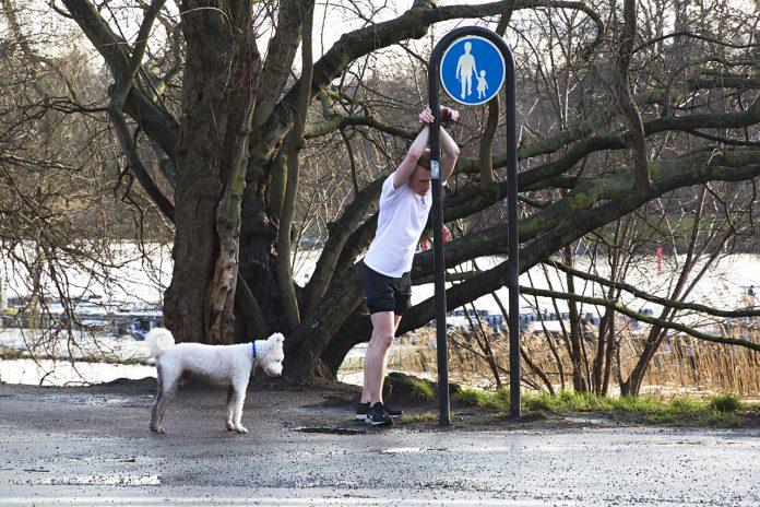 Jogga med hund